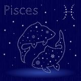 Zodiac sign Pisces with snowflakes. Zodiac sign Pisces on a blue starry sky, hand drawn vector illustration in winter motif with stylized stars and snowflakes Royalty Free Stock Photo