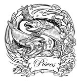 Zodiac sign - Pisces. Two fishes jumping from the water. sketch isolated on white. Zodiac sign - Pisces. Two fishes jumping from the water. Circle composition Stock Image