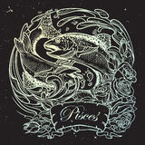 Zodiac sign - Pisces. Two fishes jumping from the water sketch on night sky background. Zodiac sign - Pisces. Two fishes jumping from the water. Circle Royalty Free Stock Image