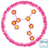 Zodiac sign Sagittarius. Primrose concept. Flowers concept. Cons Stock Images