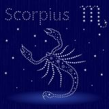 Zodiac sign Scorpius with snowflakes. Zodiac sign Scorpius on a blue starry sky, hand drawn vector illustration in winter motif with stylized stars and Royalty Free Stock Image