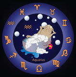 Zodiac signs. The Aquarius. Cartoon Stock Images