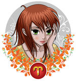 Zodiac Signs - Aries Stock Images