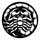 Zodiac Signs Scorpio Scorpion stock illustration