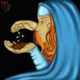 Zodiac signs - Virgo vector illustration