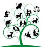 Zodiac swirl tree royalty free illustration
