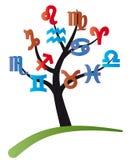 Zodiac tree Stock Images