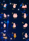 12 zodiac vector signs constellation as a pig, symbol of 2019. Flat geometrical icon in decorative style with lettering. For horos. 12 zodiac vector signs vector illustration