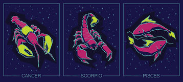Zodiac Water Signs. Cancer, Scorpio, Pisces. Royalty Free Stock Photography