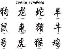 Zodiaco chino Imágenes de archivo libres de regalías