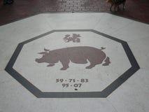 Zodiaco chino del cerdo en Lima Chinatown Fotos de archivo