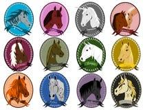 Zodiaco del cavallo royalty illustrazione gratis