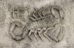 Zodiak - Scorpio lub skorpion Zdjęcie Royalty Free