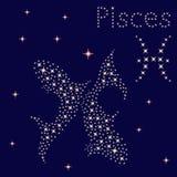 Zodiak szyldowi Pisces na gwiaździstym niebie ilustracja wektor