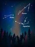 Zodiaka gwiazdozbiór w nocnym niebie nad lasowymi pesces, ar Obraz Royalty Free