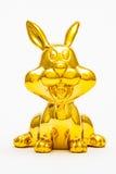 Zodiaque de lapin Photographie stock libre de droits