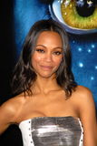 Zoe Saldana. At the Los Angeles Premiere of 'Avatar,' Chinese Theater, Hollywood, CA. 12-16-09 stock photos