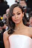 Zoe Saldana Royalty Free Stock Images