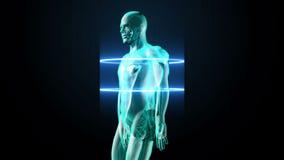 Zoemend roterend lichaam en aftastend hart Menselijk cardiovasculair systeem, Blauw Röntgenstraallicht royalty-vrije illustratie