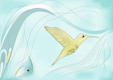 Zoemende vogel Royalty-vrije Stock Afbeeldingen