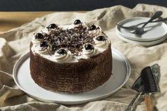 Zoet Eigengemaakt Zwart Forest Cake stock foto