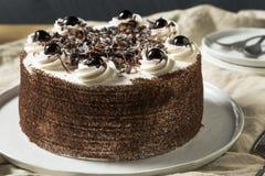 Zoet Eigengemaakt Zwart Forest Cake royalty-vrije stock afbeeldingen