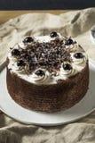 Zoet Eigengemaakt Zwart Forest Cake stock afbeeldingen
