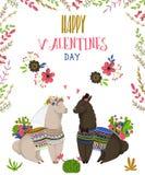 Zoet lama'spaar in liefde Leuke beeldverhaalkarakters De gelukkige Dag van de Valentijnskaart `s Ontwerpconcept voor uitnodiging, royalty-vrije stock foto's