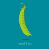 Zoet Pea Card Vector Illustratie
