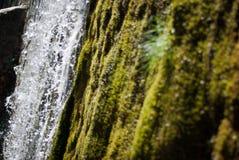 Zoet water Stock Afbeelding