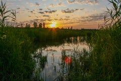 Zoet water in de steppe Royalty-vrije Stock Afbeelding