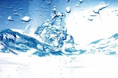 Zoet waterplons stock afbeeldingen