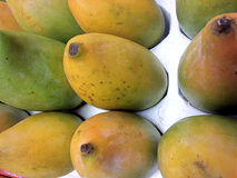 Zoete Alphonso mango Stock Afbeelding