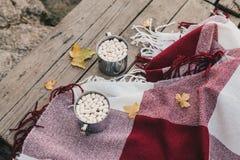Zoete cacao met heemst die zich op een rode deken bevinden Royalty-vrije Stock Afbeelding