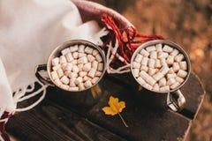 Zoete cacao met heemst die zich op een rode deken bevinden Royalty-vrije Stock Fotografie
