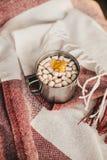 Zoete cacao met heemst die zich op een rode deken bevinden Stock Foto's