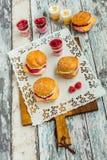 Zoete cakes in de vorm van een hamburger Royalty-vrije Stock Fotografie