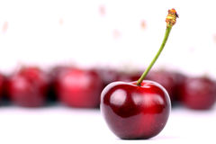 Zoete cherrys royalty-vrije stock afbeelding