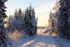 Zoete de winterdag Royalty-vrije Stock Afbeeldingen