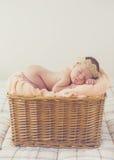 Zoete droom pasgeboren baby in een grote mand Royalty-vrije Stock Foto
