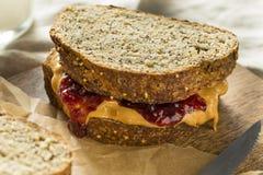 Zoete Eigengemaakte Gastronomische Pindakaas en Jelly Sandwich Royalty-vrije Stock Foto
