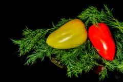 Zoete gele die en Spaanse pepers met dille op een zwarte achtergrond wordt geïsoleerd Stock Fotografie