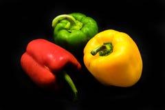 Zoete groene paprika Stock Foto