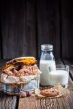 Zoete hazelnootkoekjes en melk Stock Fotografie