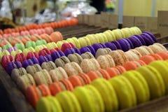 Zoete kleuren Stock Afbeelding
