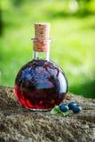 Zoete likeur in een fles met bosbessen en alcohol royalty-vrije stock afbeelding