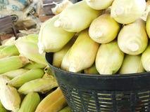 Zoete maïs, ondernemingen die inkomen, met inbegrip van Aziatische landbouwers produceren stock foto's