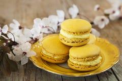 Zoete Macarons royalty-vrije stock foto