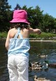 Zoete meisje voedende eenden in een vijver Stock Afbeeldingen