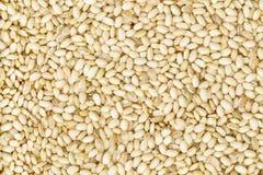 Zoete ongepelde rijst Stock Foto
